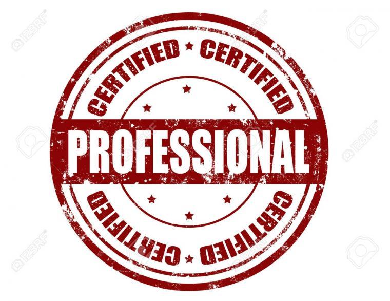 Seperti Apa Konsultan IT Yang Profesional?